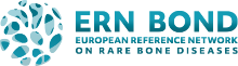 ERN BOND Logo
