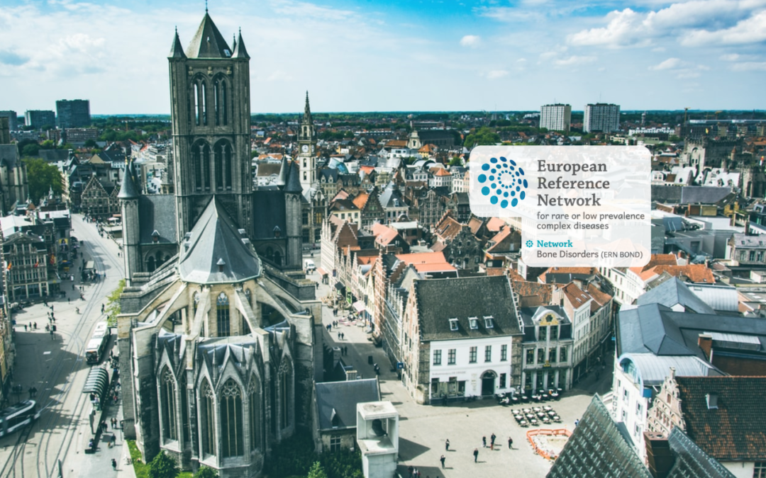 2020 Symposium of the KBVR/SRBR Osteoporosis and Fracture Prevention Group